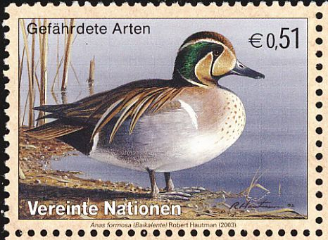 Baikal Teal stamps - mainly images - gallery format