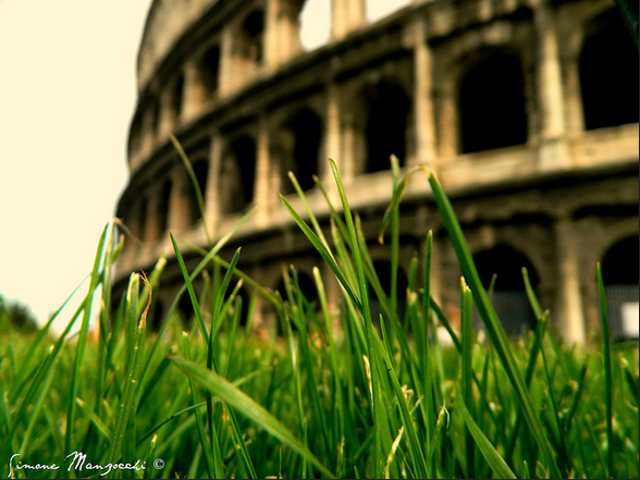 grass in front of colosseum.