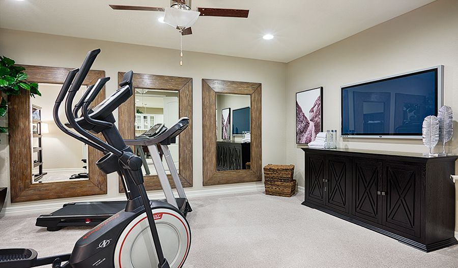 Cardio Is Calling From This Airy Home Gym In Queen Creek Az