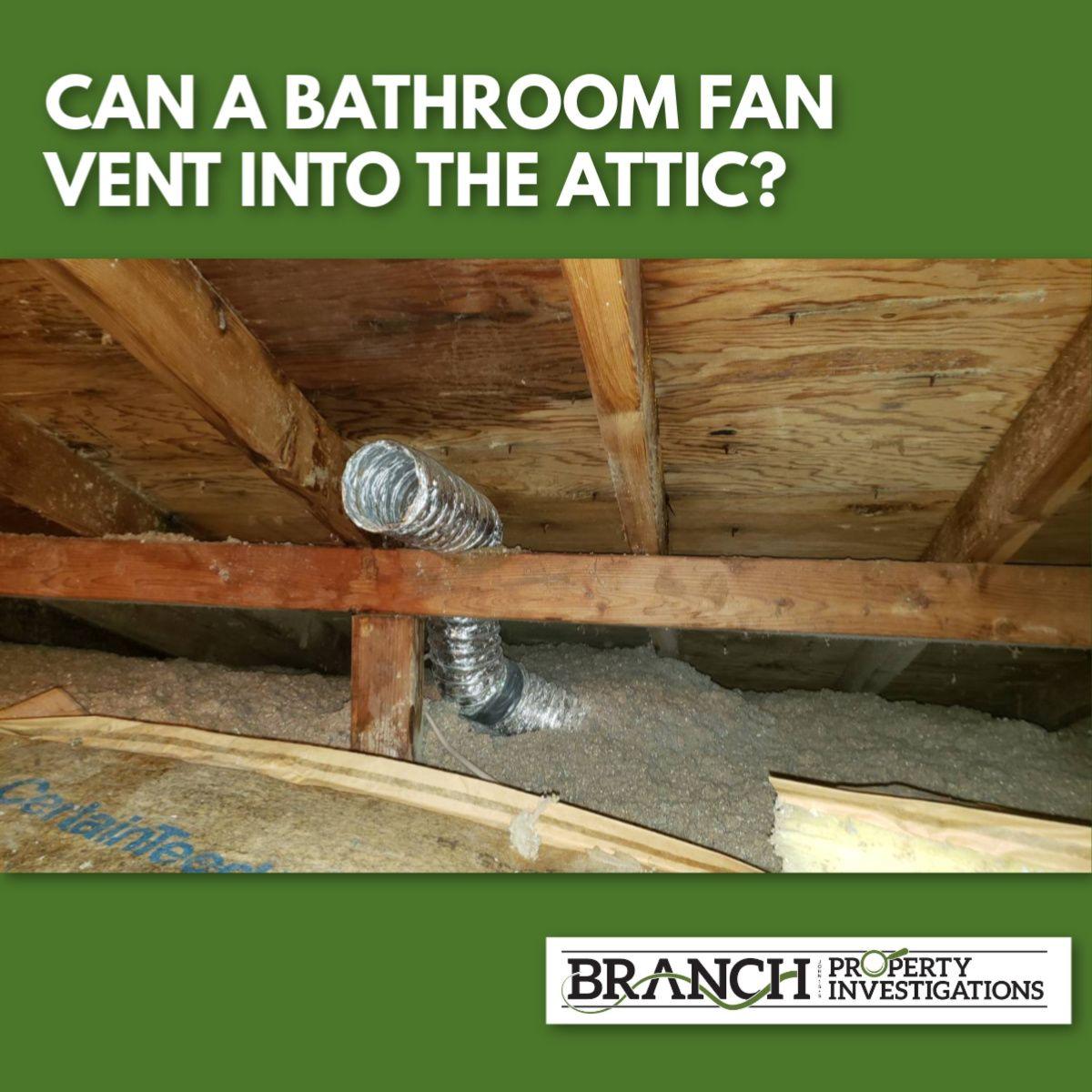 Can A Bathroom Fan Vent Into The Attic In 2020 Home Inspection Bathroom Vent Fan House Fan