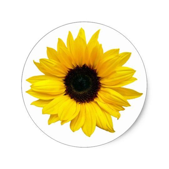 Yellow Sunflower Flower Envelope Seal Stickers Zazzle Com Sunflower Flower Yellow Sunflower Sunflower
