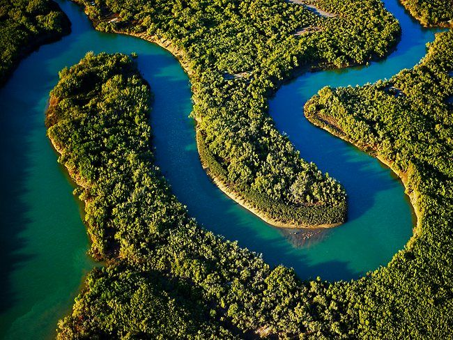 Waterways Snake Through Lush Mangroves In The Pilbara Western Australia Australia