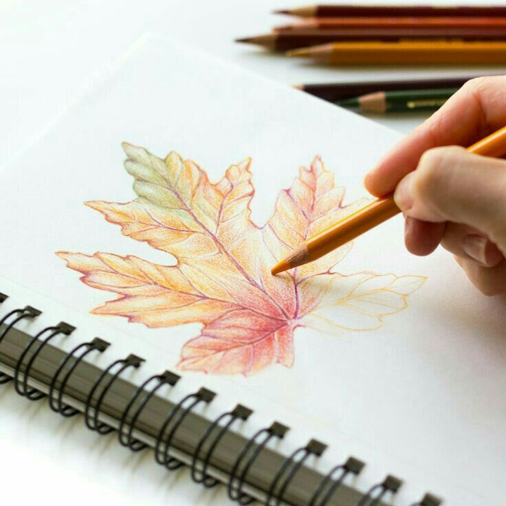 Pinterest Write Black Color Pencil Art Colorful Drawings