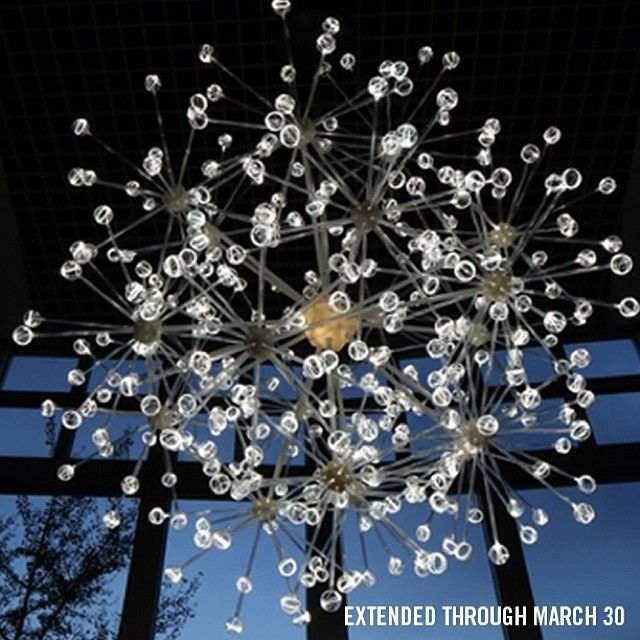 Bruce Munro: Light at Franklin Park Conservatory has been extended through March 30!