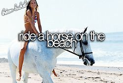 Ride a horse on the beach.