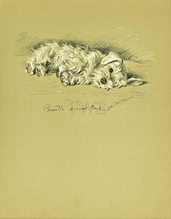 SEALYHAM Dog Print, Puppy Print, Wall Decor, Wall Art, Antique Decor ...