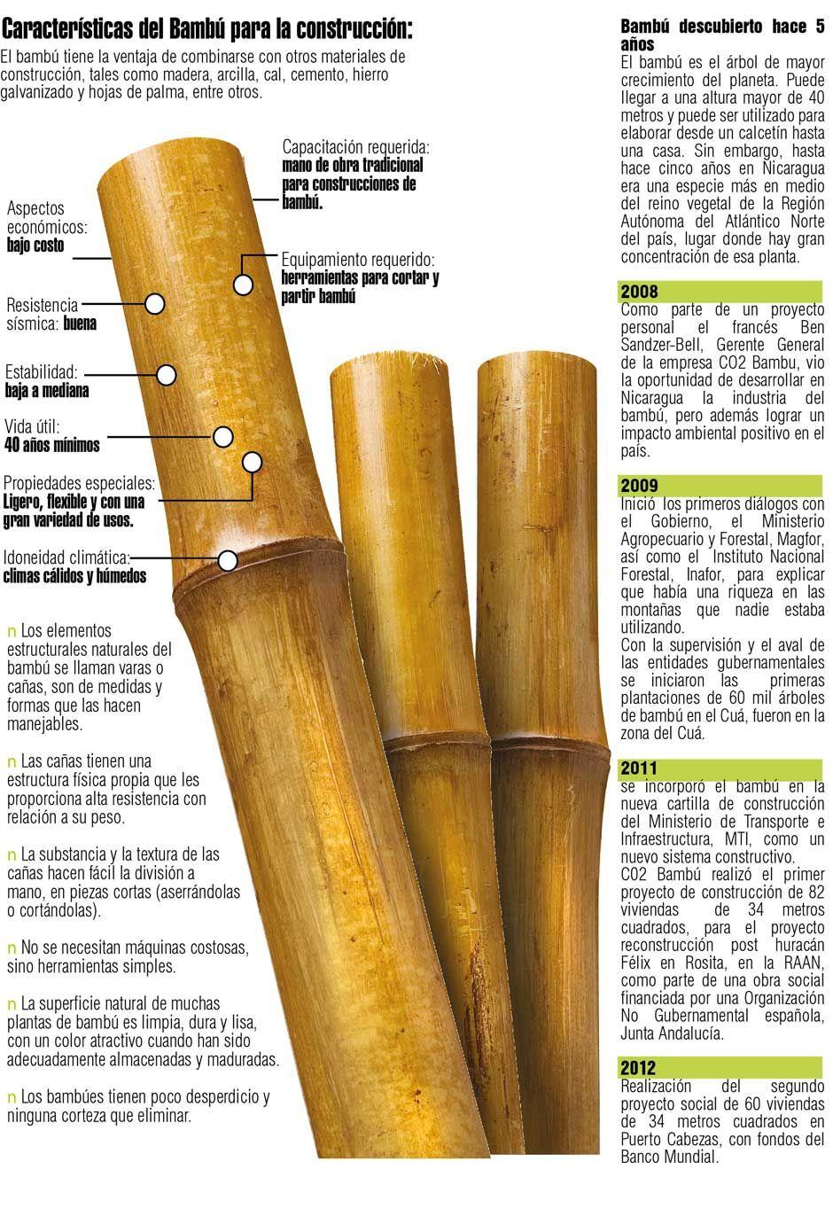 NICARAGUA:   CO2 Bambú  Un árbol de bambú podría ser para algunos una especie más en el reino vegetal. Para otros, podría ser una planta sin pena ni gloria que no rinde frutos. Sin embargo, para Ben Sandzer-Bell significa una bendición de la naturaleza, cuyo material puede ser utilizado para la construcción de viviendas.