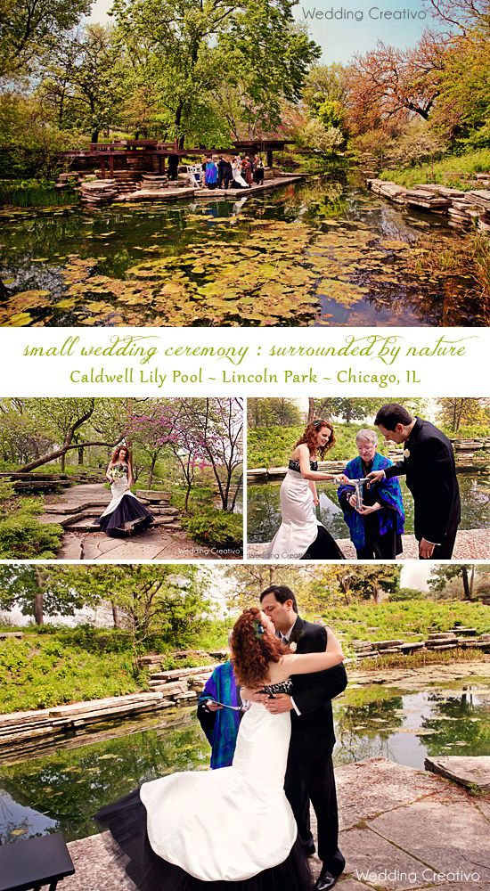 Small Wedding Ceremony At Caldwell Lily Pool Weddings And Elopements Chicago