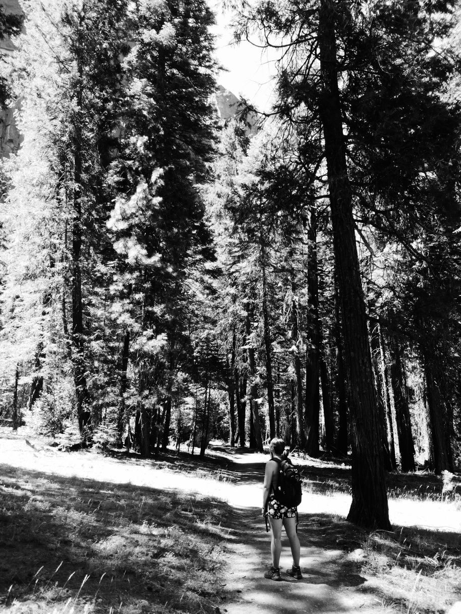 Yosemite National Park. Read on at www.thegoodwolfmanifesto.com
