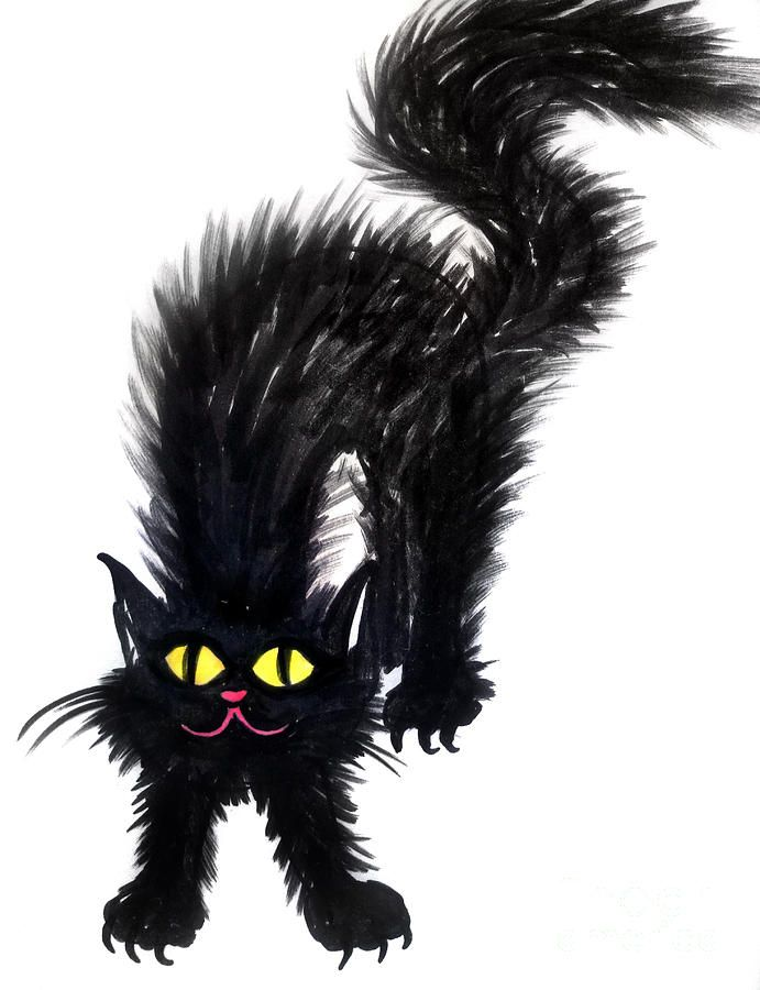 Fluffy Black Cat Drawing By Sofia Metal Queen Art Of Sofia