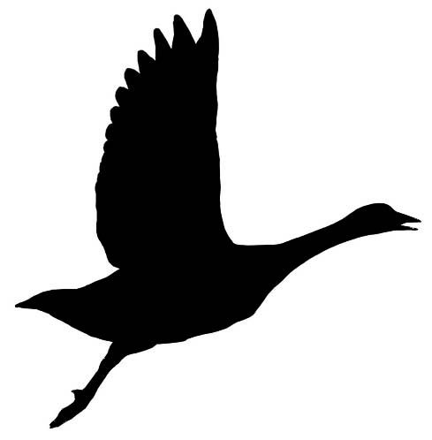 goose silhouette google search