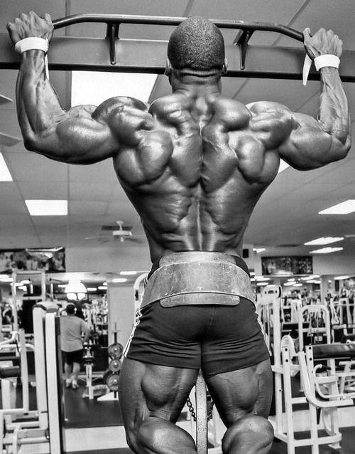 Back Espalda Bodybuilding | Exercise Training Back Ejercicios ...