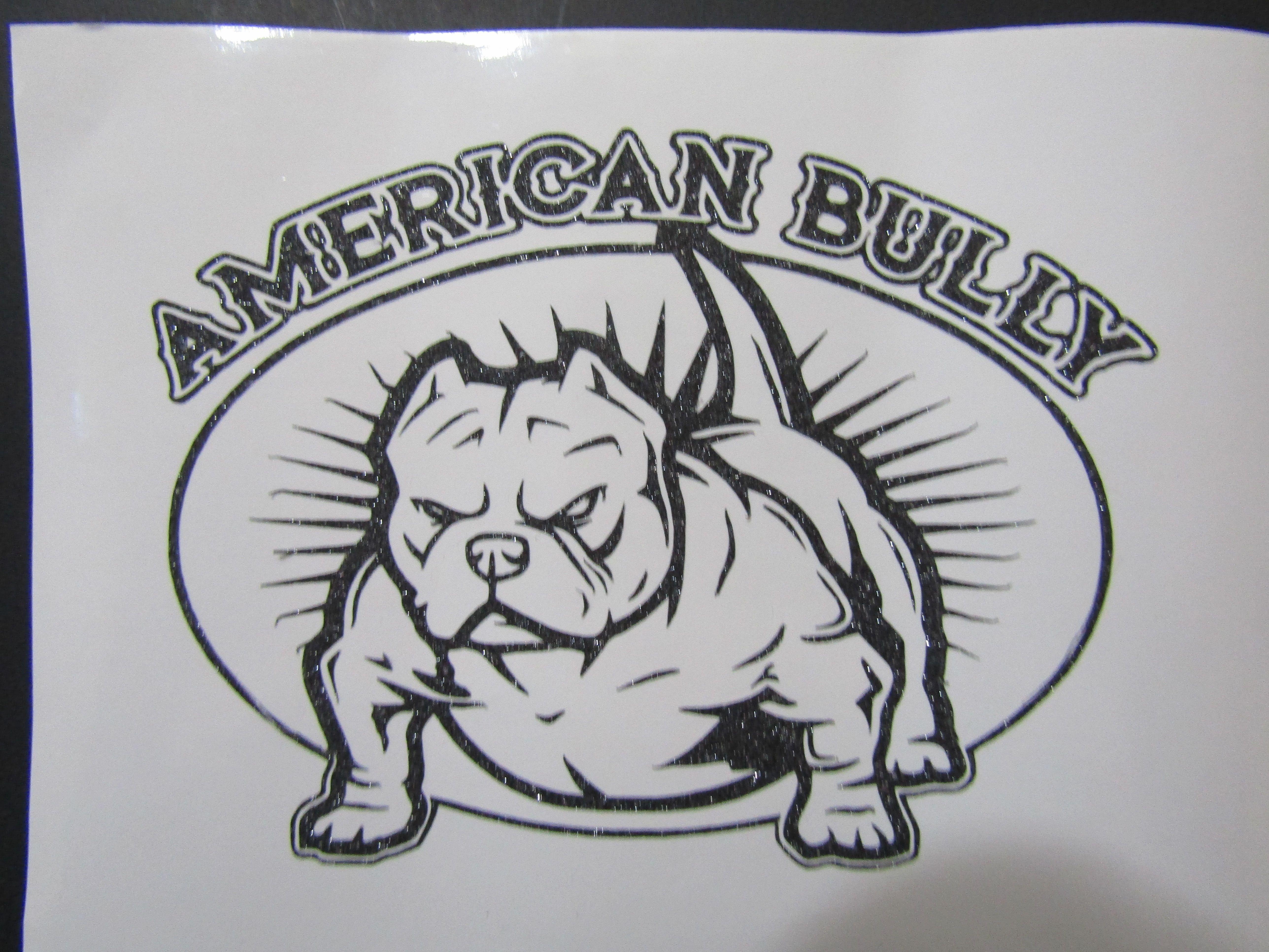 American Bully Pitbull Dog Bully Mom Bully Dad American Bully