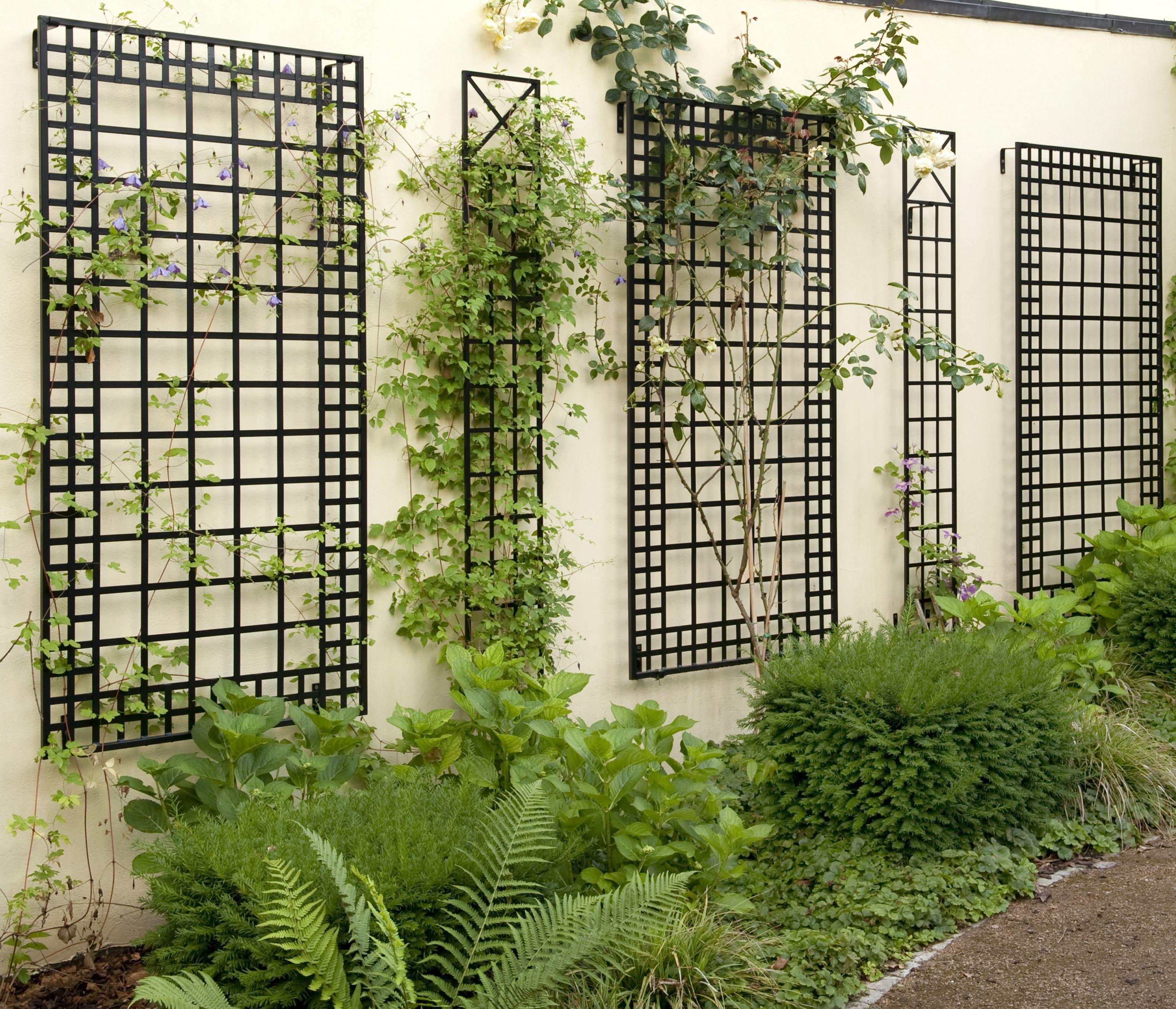 Exklusives Wandspalier Aus Metall 200 X 100 Cm Kann Eine Fassadenbegrunung Schoner Sein Spalier Rankgitter Fassadenbegrunung