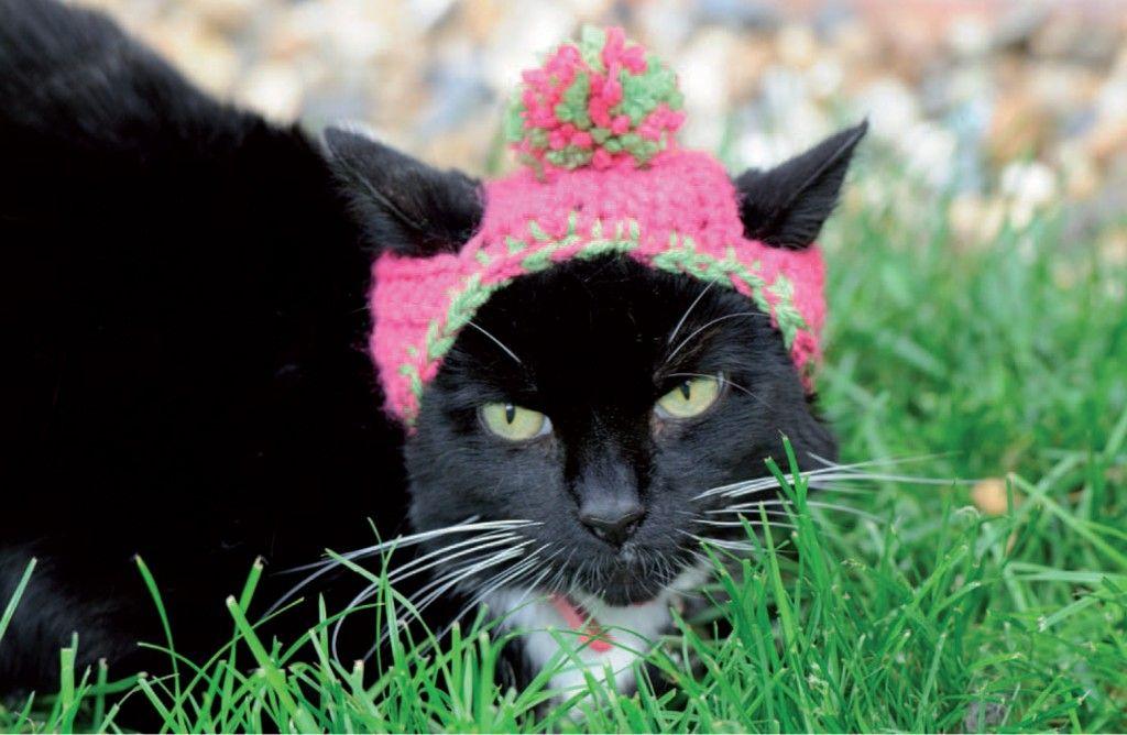 Cats in Hats Pattern Excerpt | Gato, Ganchillo y Tejido