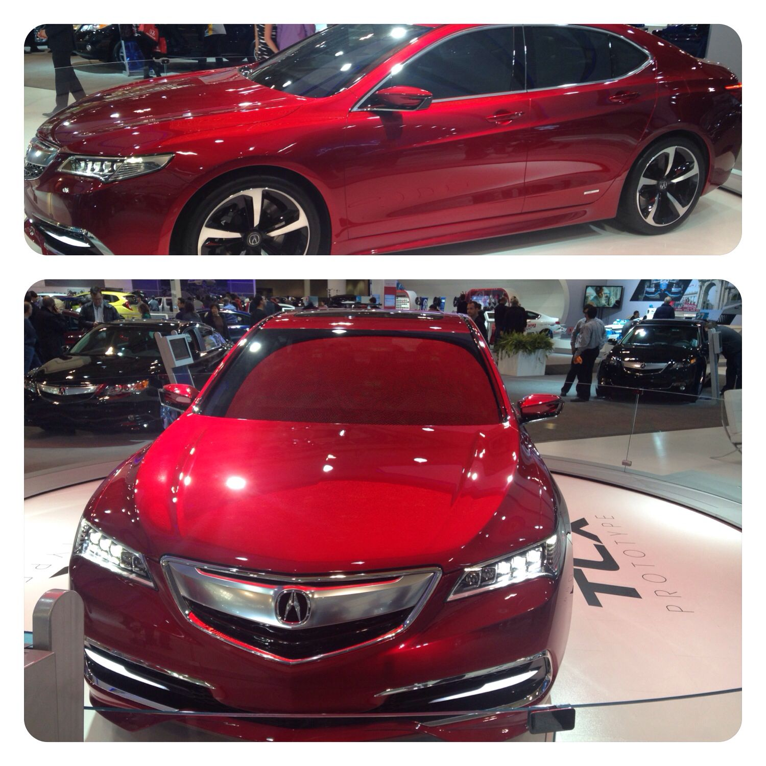 2015 Acura TLX 2014 Toronto Autoshow (With Images)