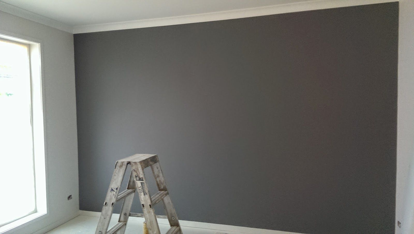 Image Result For Dulux Malay Grey Grey Feature Wall Feature Wall Living Room Pink Feature Wall