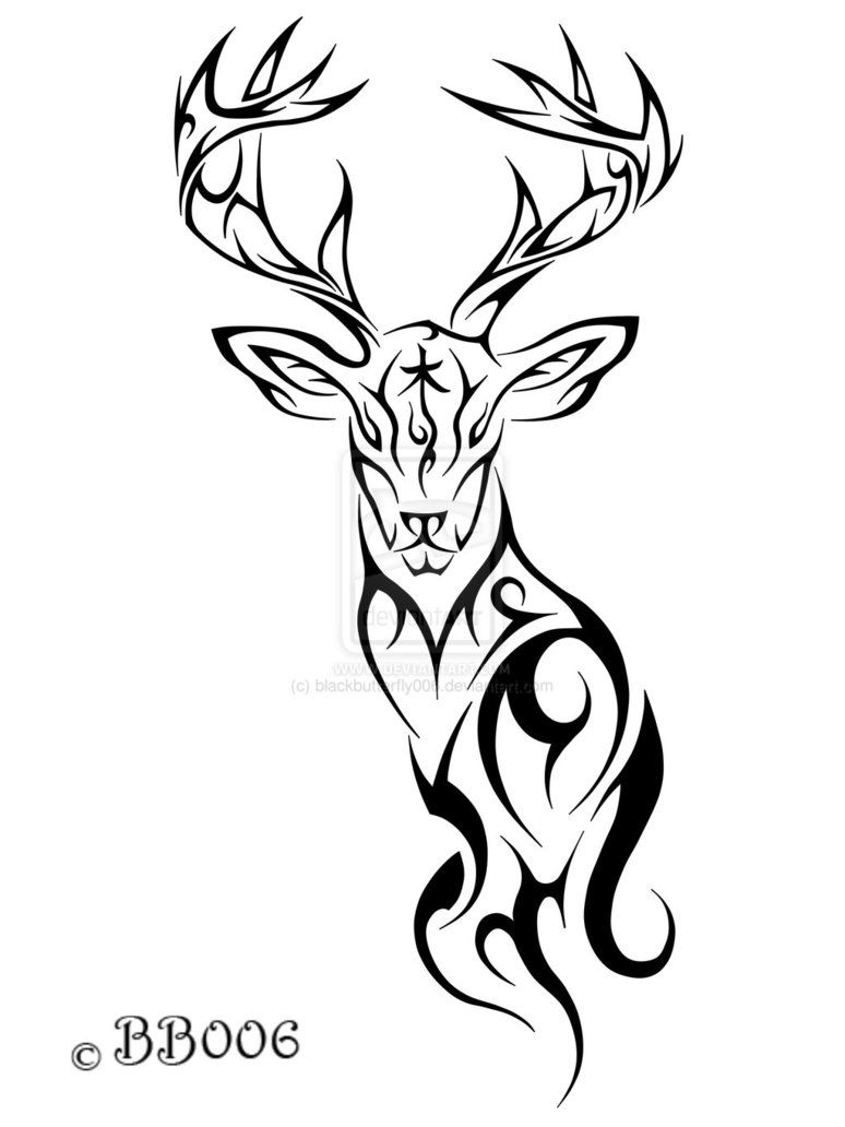 Tribal Deer Tattoo By Blackbutterfly006 On Deviantart Deer Tattoo Tribal Tattoos Tattoo Design Drawings