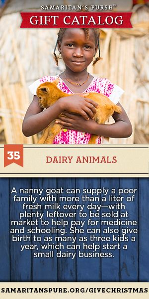 Your gift of a dairy goat will provide more than a liter of fresh milk every day to a family in need