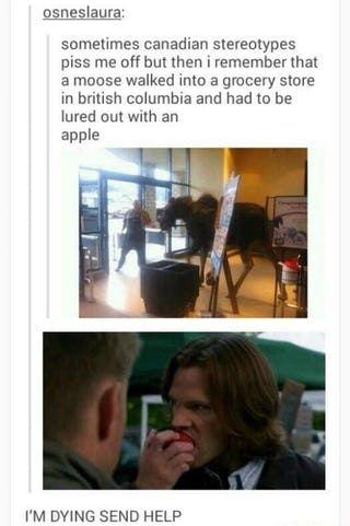 15 Hilarious Times 'Supernatural' Hijacked Tumblr Posts