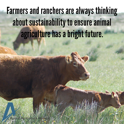 Sustainability is always top of mind for farmers and ranchers! http://bit.ly/292RfUz