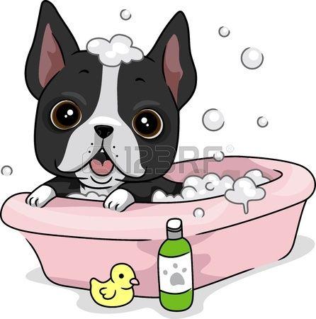 12742788 Ilustracion De Un Perro Tomar Un Bano Jpg 446 450 Puppy Cartoon Boston Terrier Funny Dog Bath