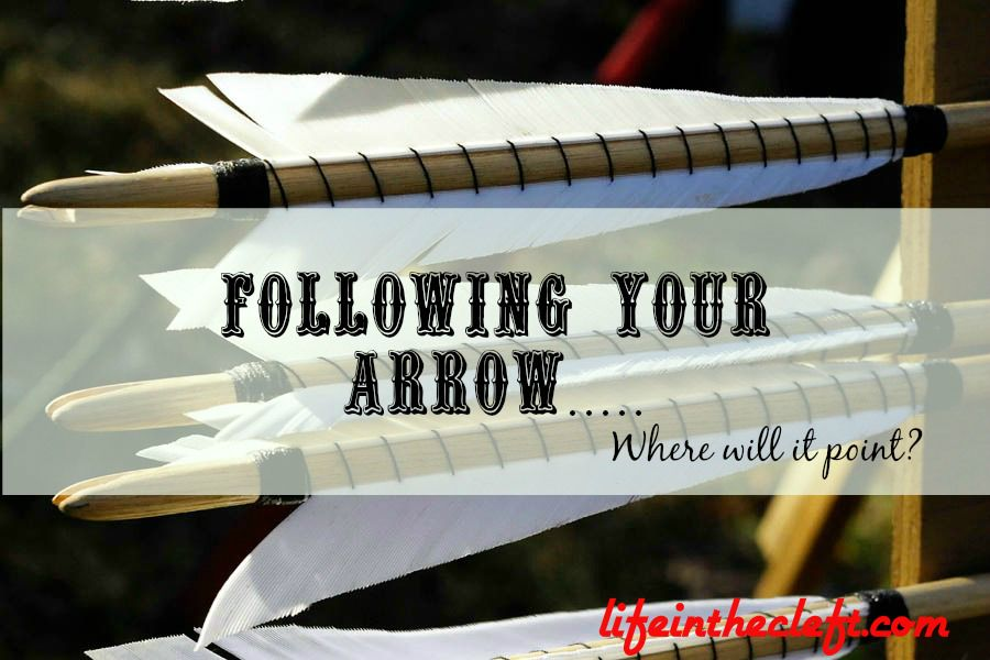 Following Your Arrow......Where Will It Point?