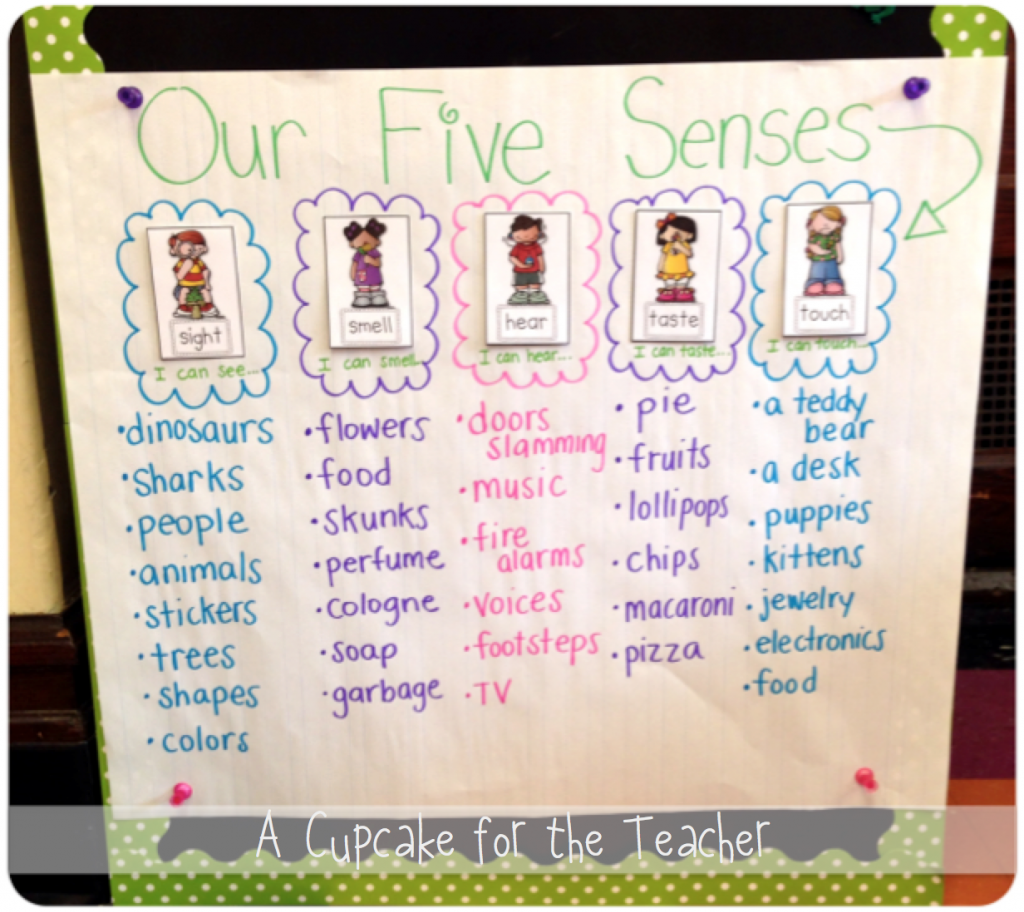 Five Senses Anchor Chart