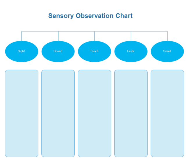 Blank Observation Chart For Recording Sensory Observation