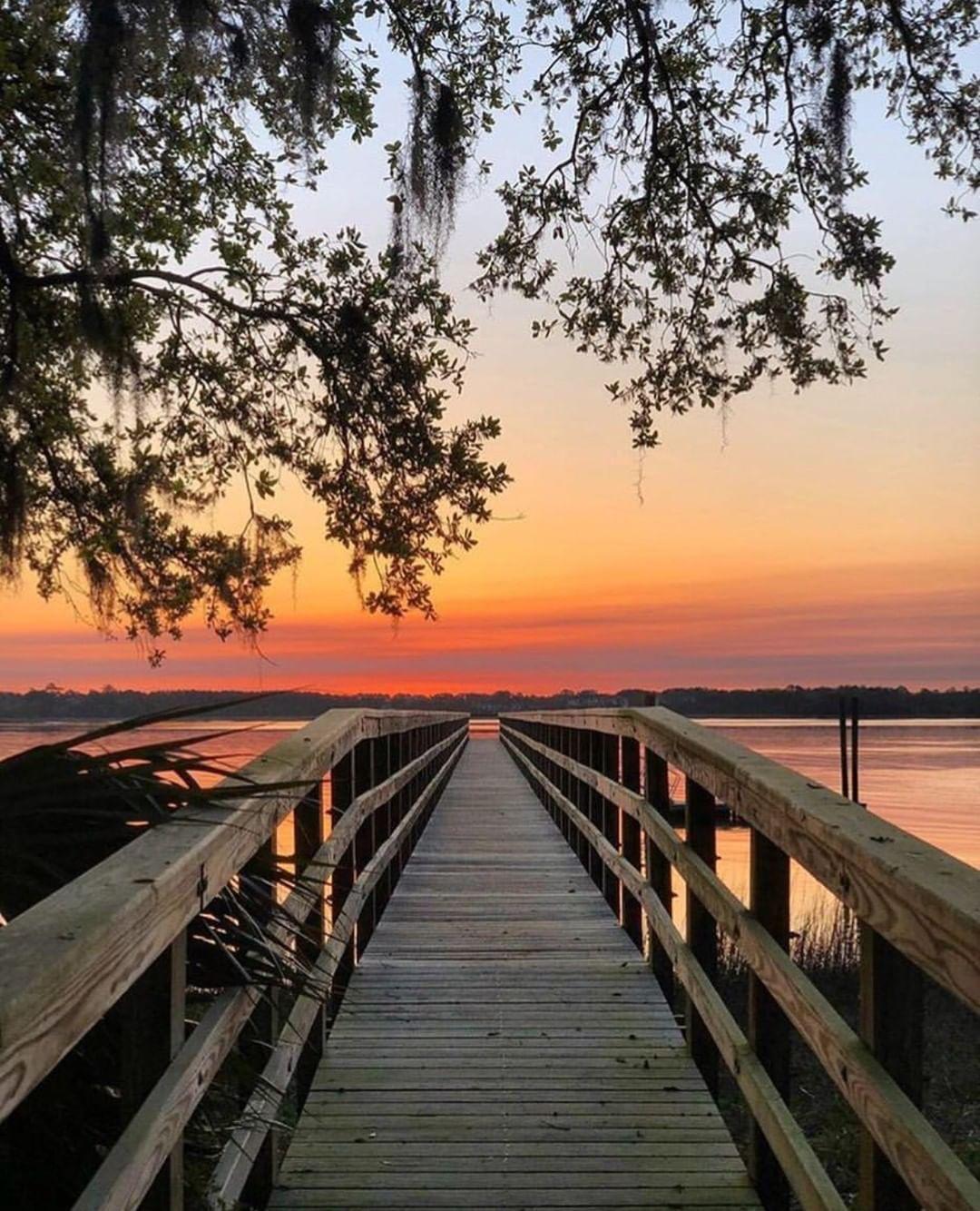 """Daniels Island Charleston Sc: South Carolina On Instagram: """"Daniel Island, South"""