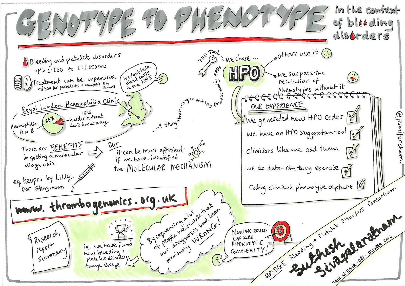 Genotype To Phenotype And Translation In The Context Of