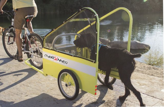 run ride bike trailer for dogs the safe way to bike. Black Bedroom Furniture Sets. Home Design Ideas
