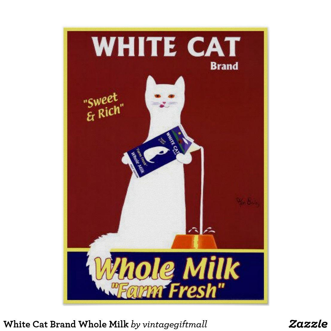 White Cat Brand Whole Milk Poster Zazzle Com In 2020 White Cat Milk Advertising Cats