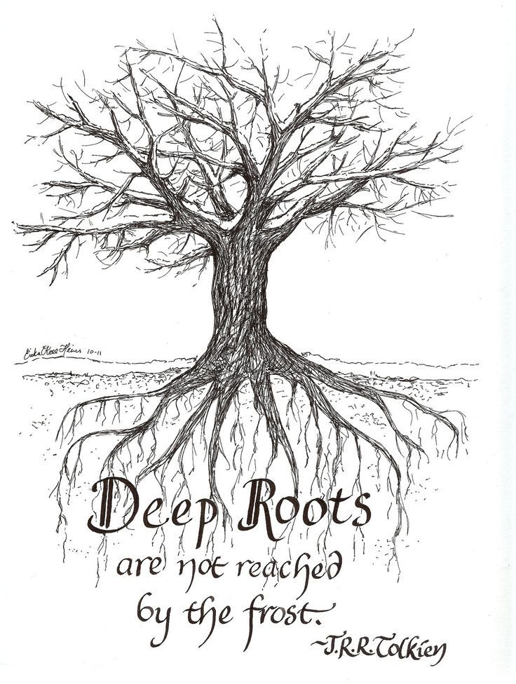 Deep Roots Quotes Quotesgram Great Quotations Roots Quotes