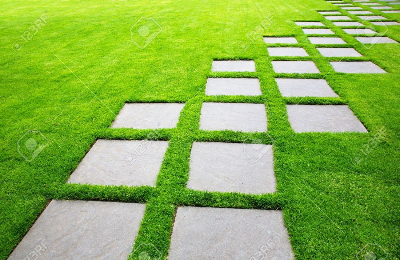 Picture of Diagonal Rows of Large Stone Pavers green grass lawn stock  photo, images and stock photography.