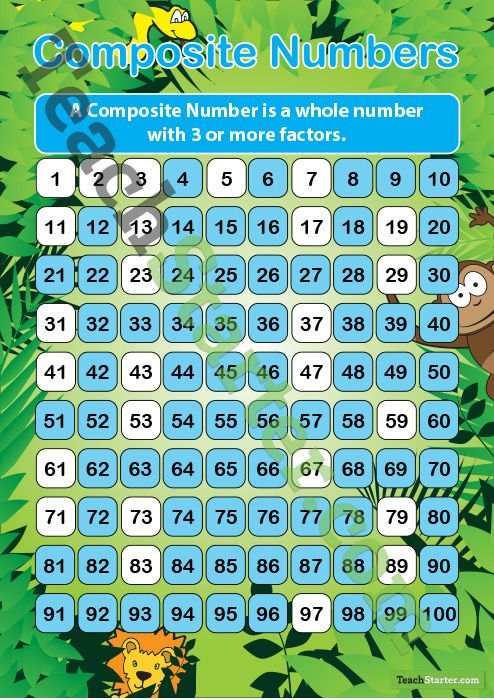 Composite Numbers – Rainforest | Teach Starter - Teaching Resources ...