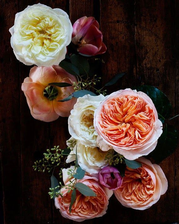 Flowers in shades of pink, orange, and red that are rich and vibrant in colour.