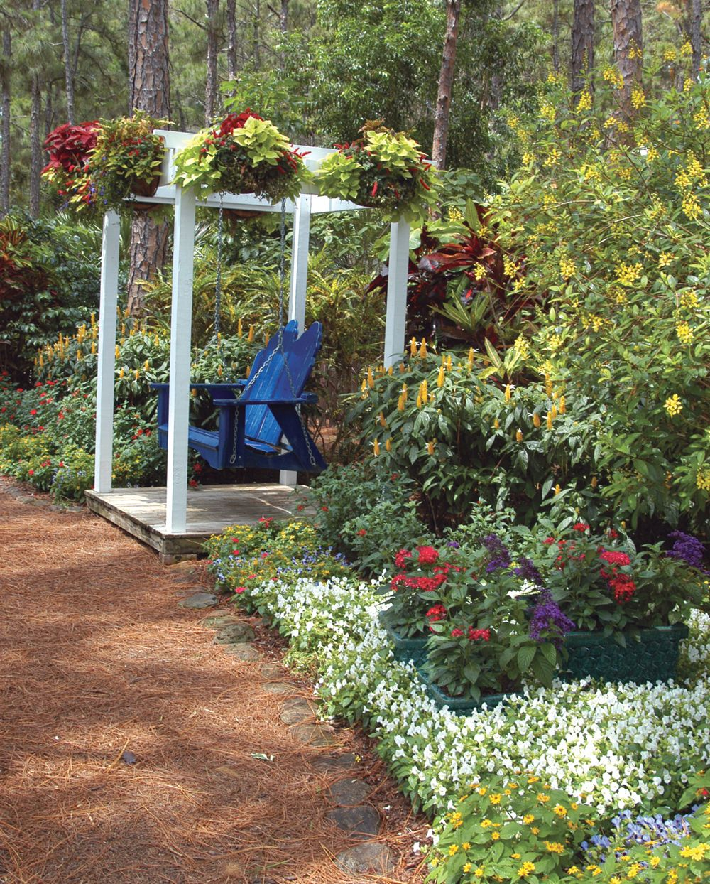 This Palm Beach county landscape if filled with garden color. Tall ...