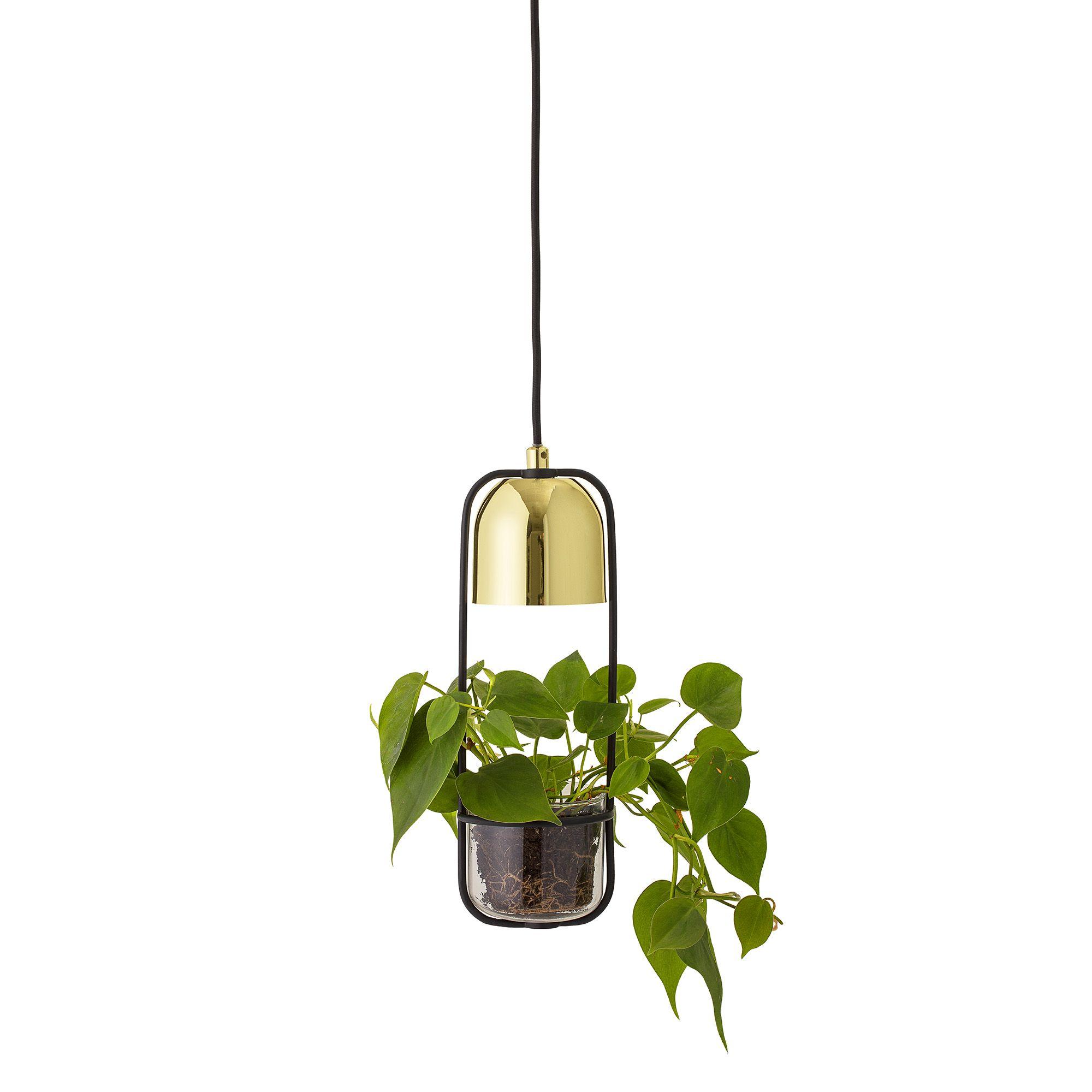 lampen für grünpflanzen
