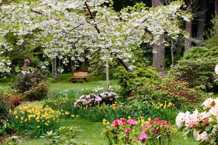 6b45b676c884e3e0c3ff2dbc73eac6c5 - Best Gardens To Visit In Spring