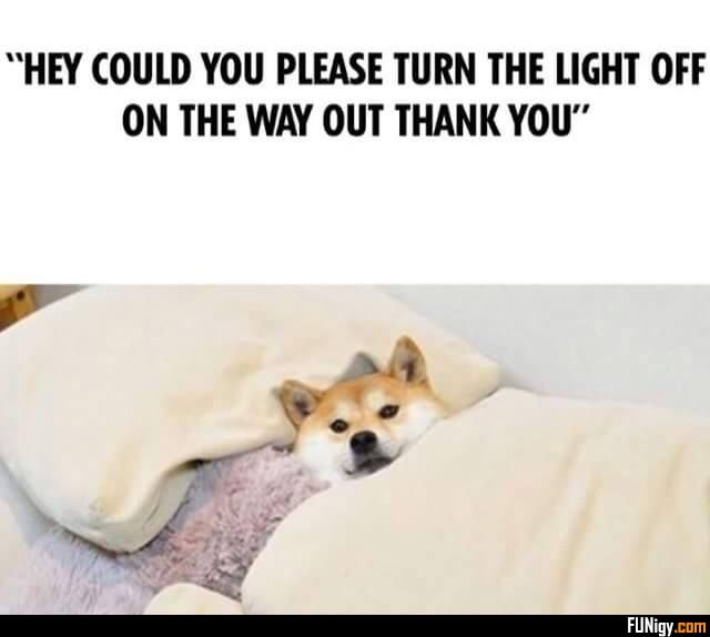 """""""HEY COULD YOU PLEASE TURN THE LIGHT OFF ON THE... - #light #please #thank #turn"""