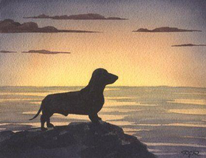 Amazon Com Dachshund Sunset Dog Art Print By Artist Dj Rogers