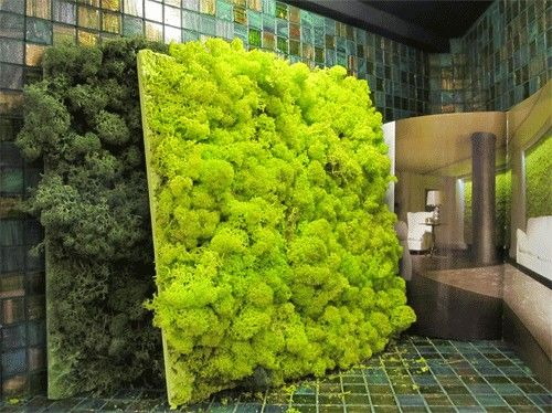 The Moss Tile Made From Natural Ilized Lichen Is Maintenance Free And Comes In Diffe Colours