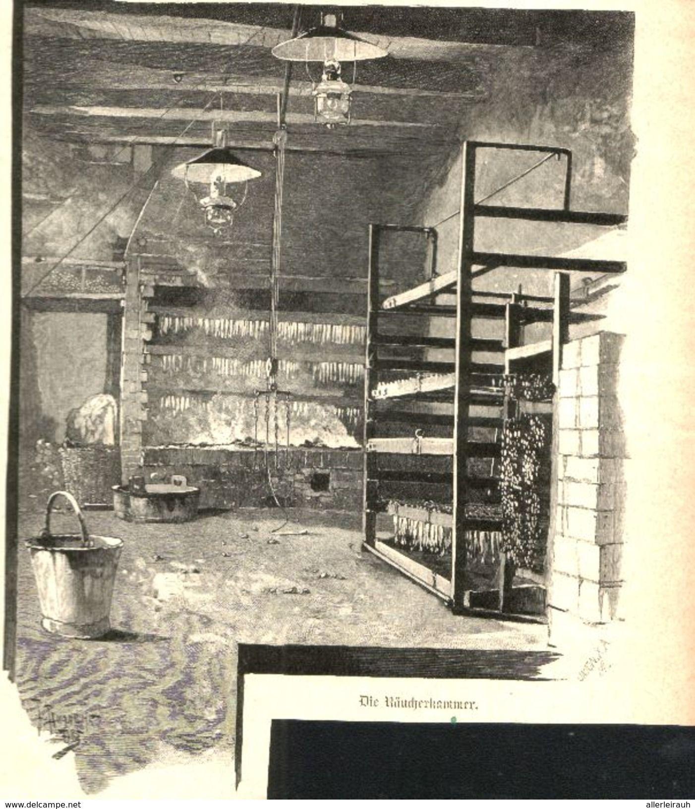 Das Trocknen Der Frischen Fische Druck Mit Gedicht Entnommen Aus Zeitschrift 1896 Artikelnummer 434682913 Zeitschriften Drucken Und Comic