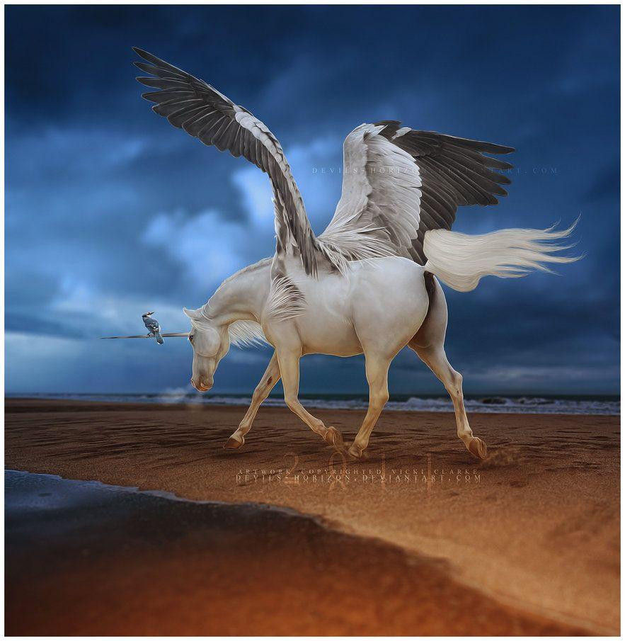 Pin von linda bracci auf unicorns   Pinterest