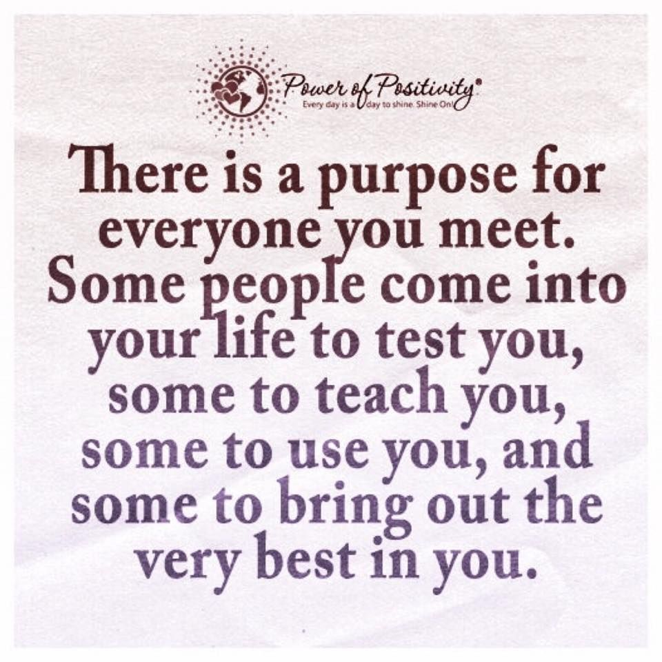 Some Great Quotes About Life There Is A Purpose For Everyone You Meetsome People Come Into