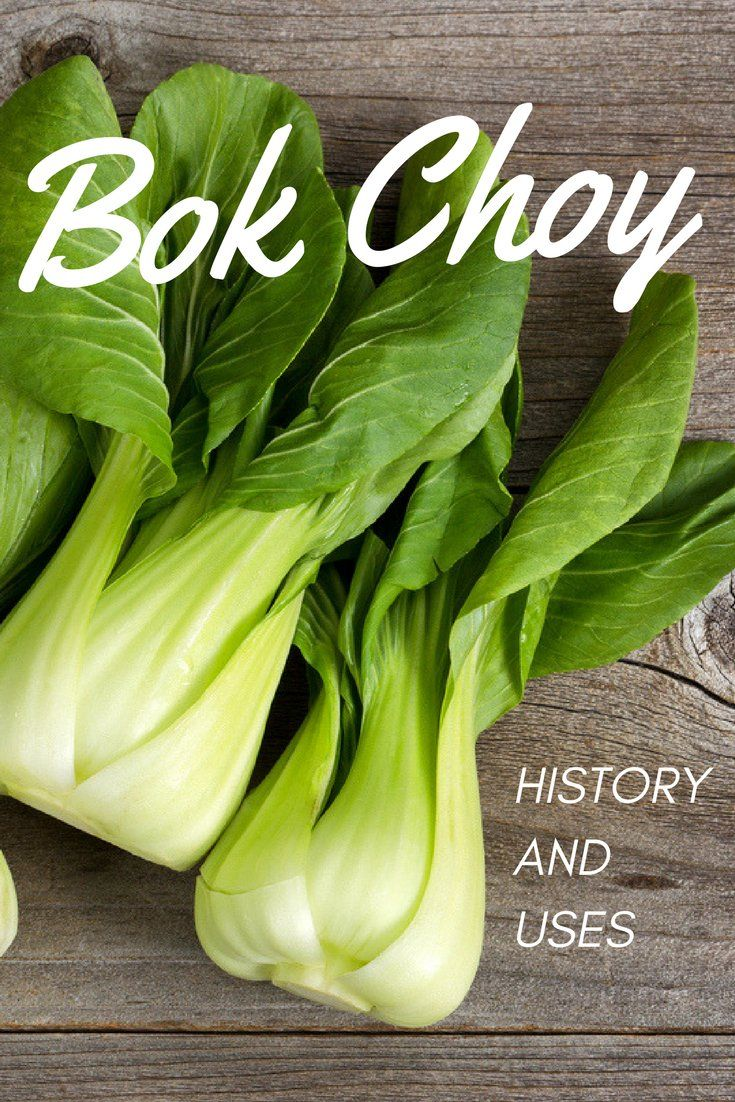 Bok choy history and uses gardening know hows blog