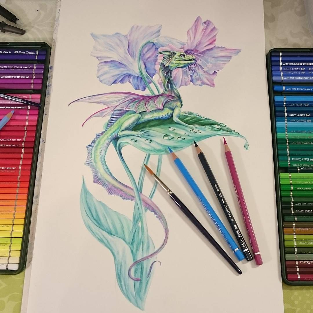 Work In Progress Fairy Dragon I Tested Out Faber Castell Albrecht