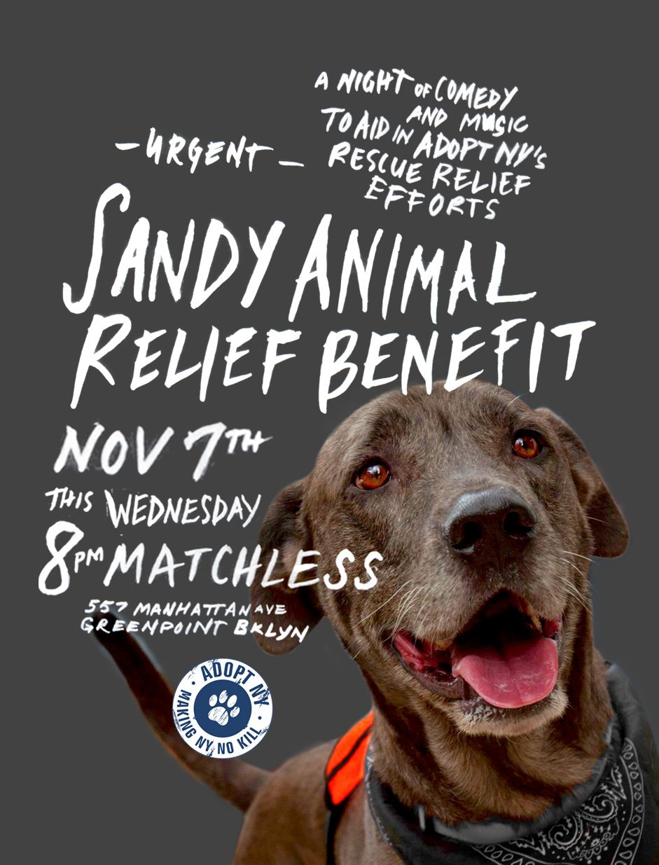 Sandy Animal Relief Benefit Wednesday! in Brooklyn http