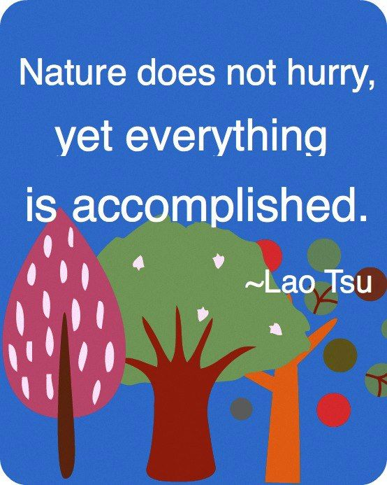 Nature does not hurry and yet...